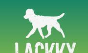 Lackky - Mạng xã hội cho thú cưng
