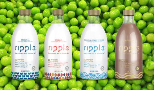 Sữa có nguồn gốc từ đậu Hà Lan của Ripple.