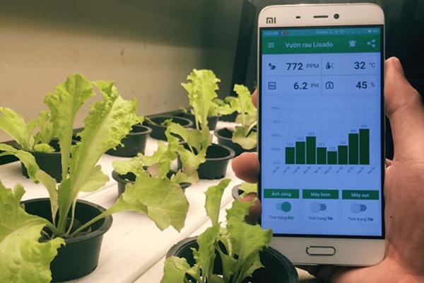 Ứng dụng giám sát việc trồng và chăm sóc rau tự động trên điện thoại di động. Ảnh: Nhân vật cung cấp.