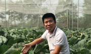 Khởi nghiệp nông nghiệp gặp khó vì vốn mỏng, kén nhà đầu tư