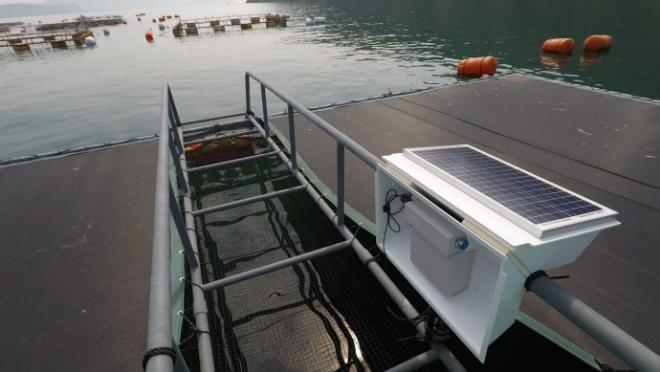 Mô hình nuôi cá sử dụng công nghệ IoT và phân tích dữ liệu của Umitron. Ảnh: e37