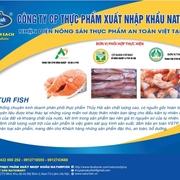 công ty cổ phần thực phẩm xuất nhập khẩu natur fish