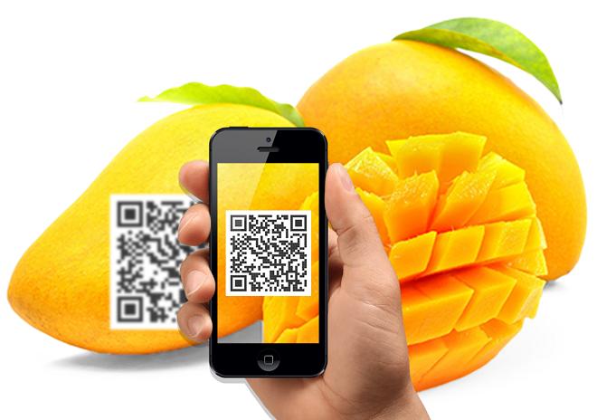Chỉ với thao tác quét mã QR, người sử dụng có thể đọc và kiểm tra toàn bộ thông tin sản phẩm, từ nguồn gốc xuất xứ, khâu đóng gói, vận chuyển và phân phối đến tay người tiêu thụ.