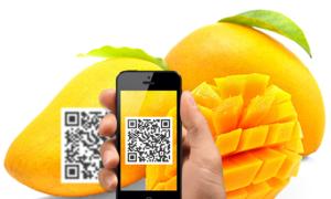 Ứng dụng Blockchain để minh bạch thông tin cho nông sản Việt