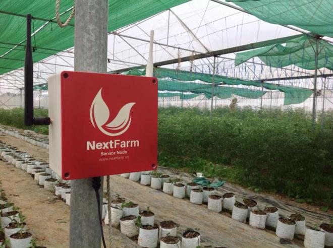Hệ thống Nextfarm đã hiện diện tại 20 nông tại ở miền Bắc. Ảnh: NVCC.