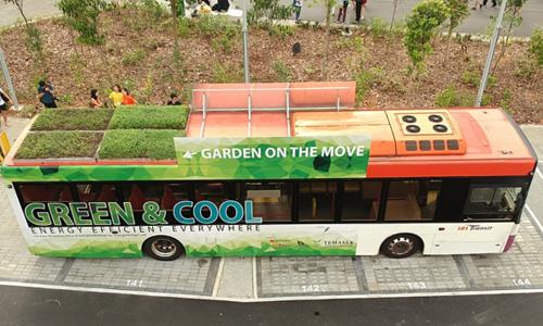 Tiết kiệm năng lượng bằng thảm thực vật trên nóc xe buýt