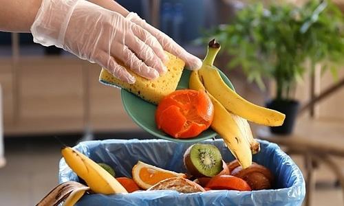 Startup giải quyết vấn đề lãng phí thực phẩm