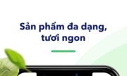 Kamereo Vietnam