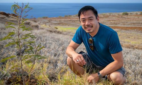Startup tư vấn trồng cây kiếm tiền tại vùng đất khô cằn